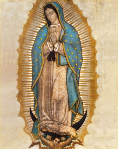 Image result for guadalupe